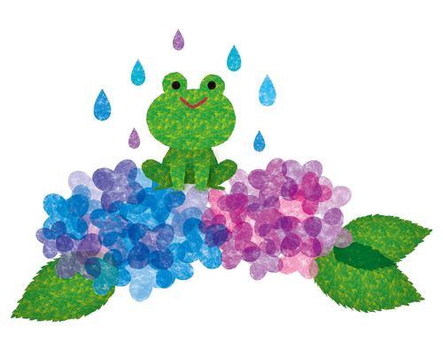 梅雨ですね。
