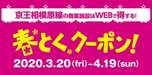 新規の方がお得に【春とくクーポン】4月19日まで!